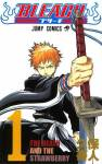 bleach-volume-01-cover-1-1.jpg