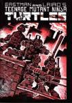 turtles001.jpg