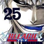 bleach-spoiler-1.png