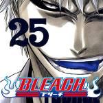 bleach-spoiler-5.jpg